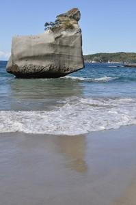 Coromandel,Sail Rock