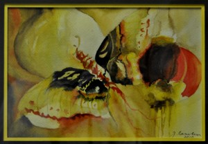 Beautiful Butterfly - after Mike Ward