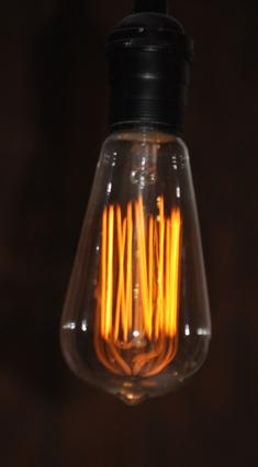 Large Filament Light Bulb