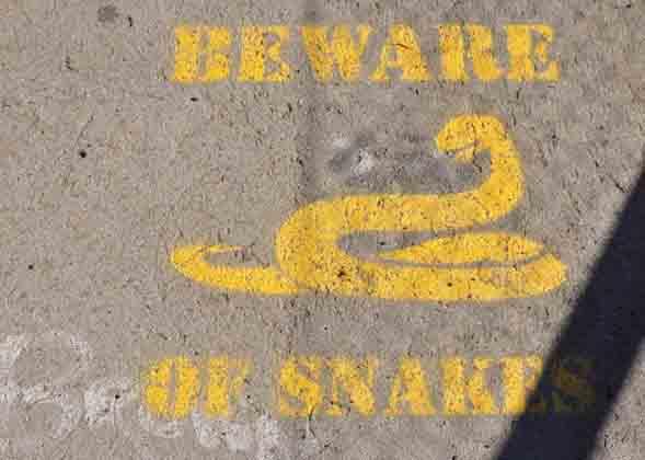 Warning snakes