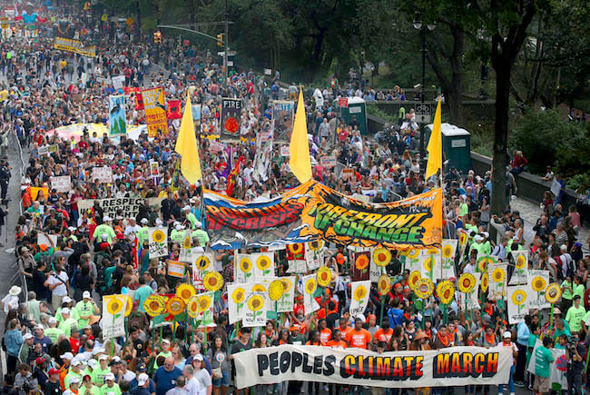 Sparkling New Year,Climate March, New Year 2017